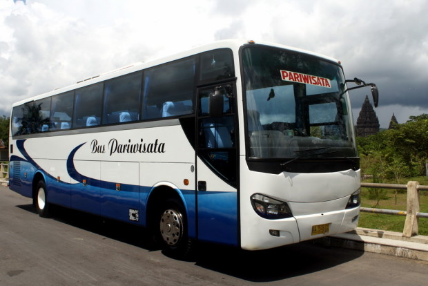 sewa bus 50 seat